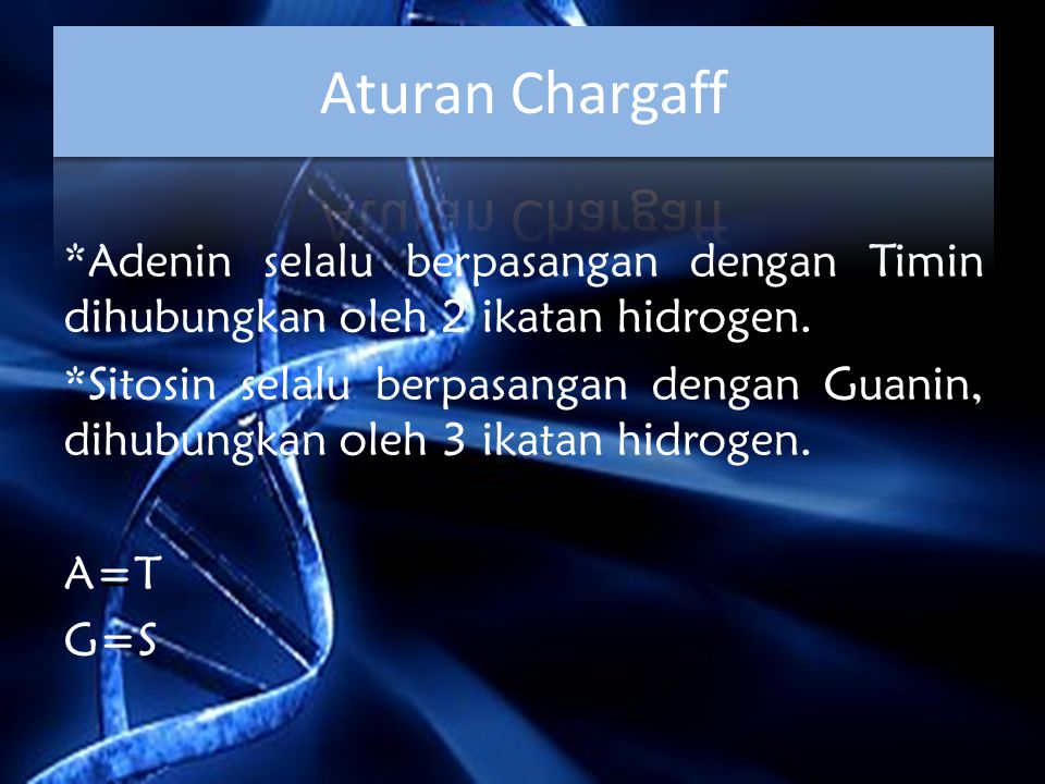 Aturan Chargaff