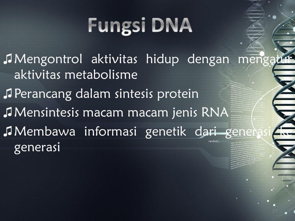 Fungsi DNA