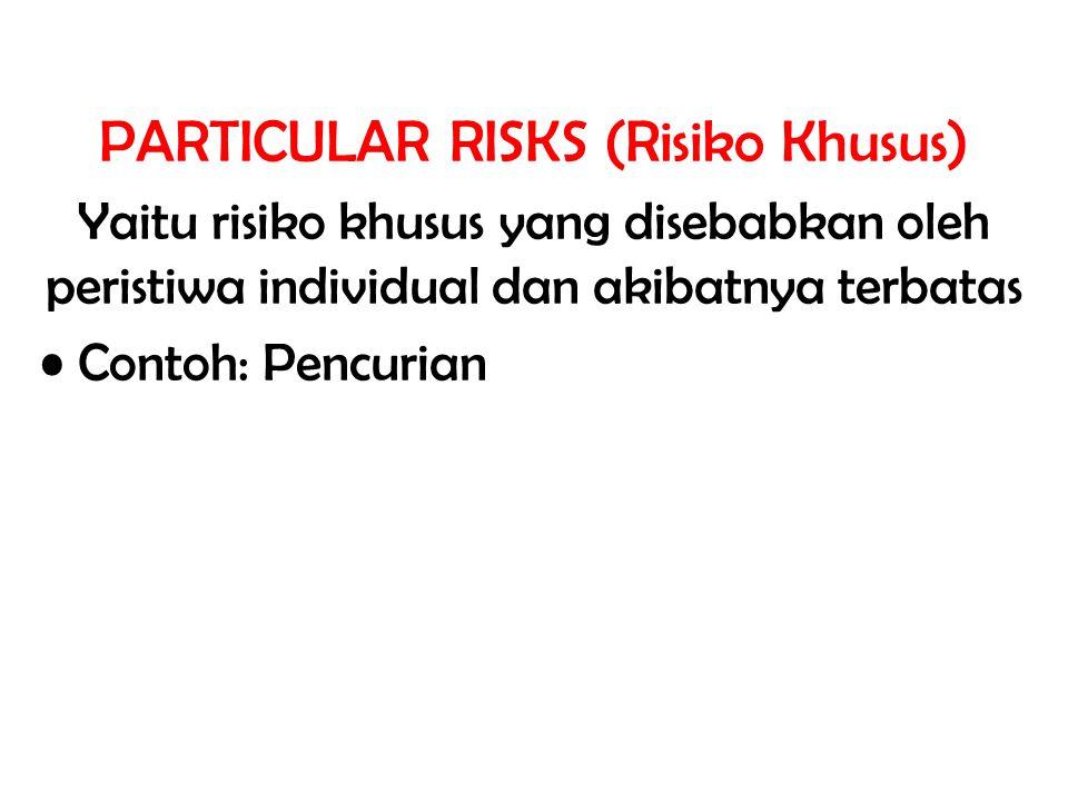 PARTICULAR RISKS (Risiko Khusus)