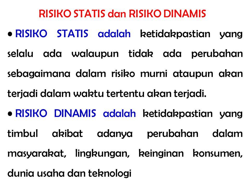RISIKO STATIS dan RISIKO DINAMIS