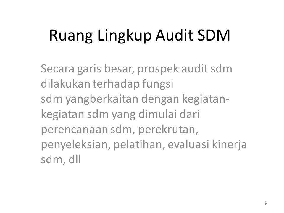 Ruang Lingkup Audit SDM