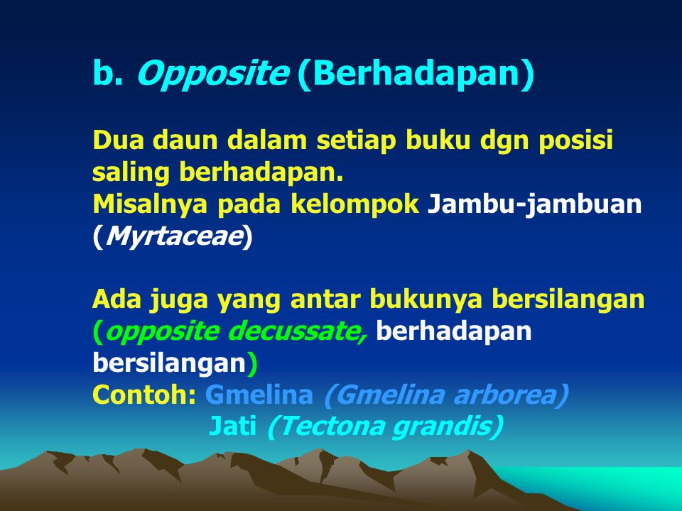 b. Opposite (Berhadapan)