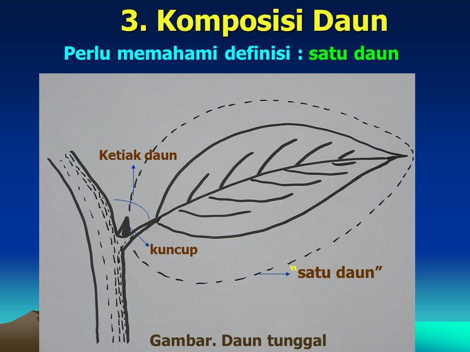 3. Komposisi Daun Perlu memahami definisi : satu daun satu daun