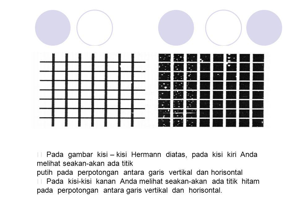 ƒ Pada gambar kisi – kisi Hermann diatas, pada kisi kiri Anda melihat seakan-akan ada titik
