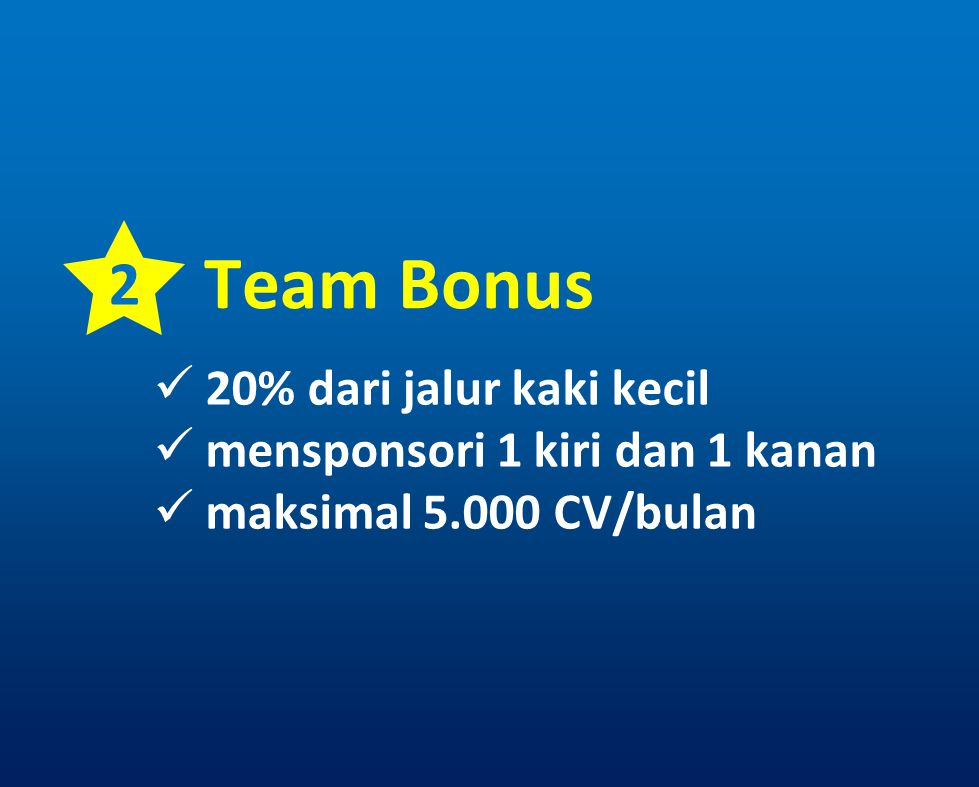 Team Bonus 2 20% dari jalur kaki kecil mensponsori 1 kiri dan 1 kanan