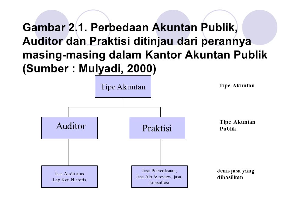 Gambar 2.1. Perbedaan Akuntan Publik, Auditor dan Praktisi ditinjau dari perannya masing-masing dalam Kantor Akuntan Publik (Sumber : Mulyadi, 2000)