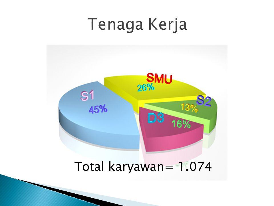 Tenaga Kerja Total karyawan= 1.074