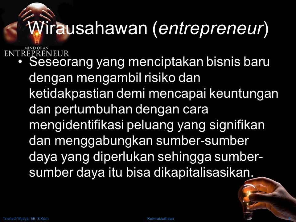 Wirausahawan (entrepreneur)