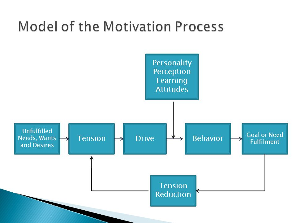 Model of the Motivation Process