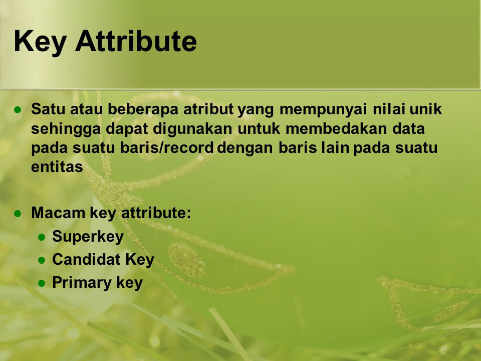 Key Attribute