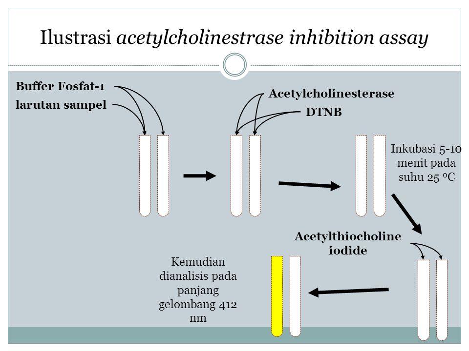 Ilustrasi acetylcholinestrase inhibition assay