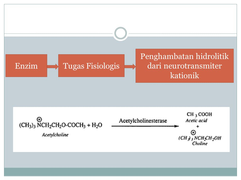 Penghambatan hidrolitik dari neurotransmiter kationik