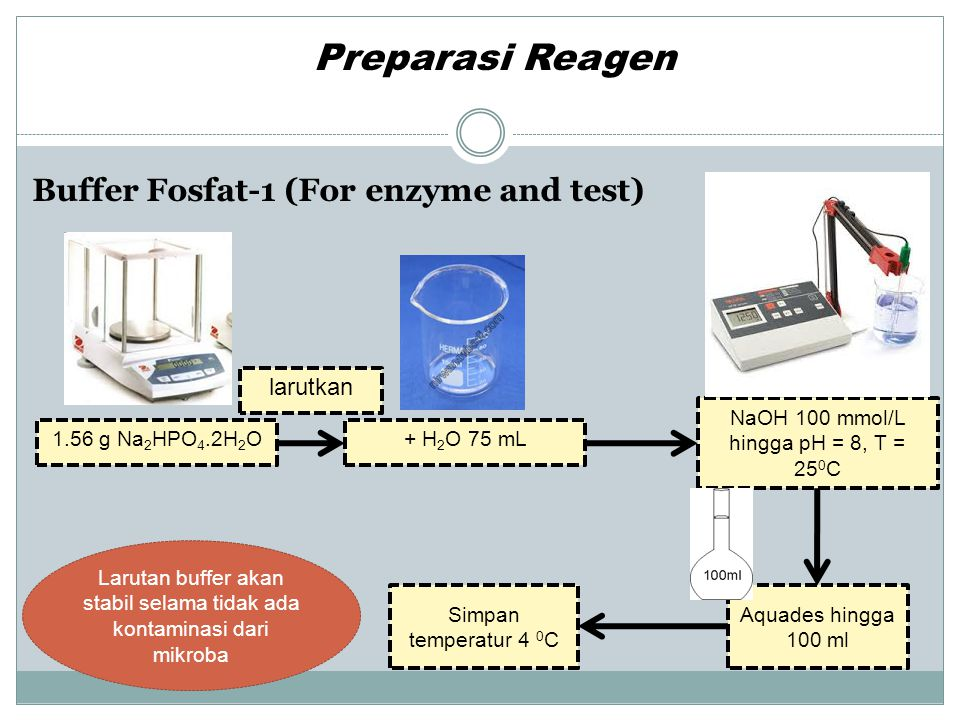 Preparasi Reagen Buffer Fosfat-1 (For enzyme and test) larutkan
