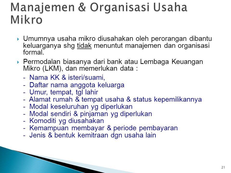 Manajemen & Organisasi Usaha Mikro