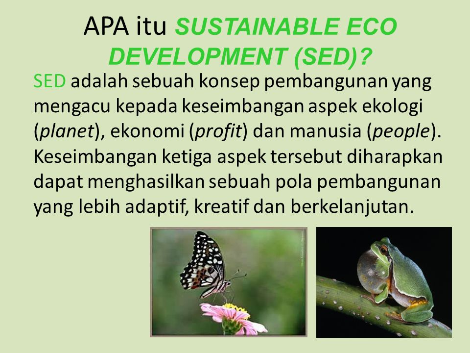 APA itu SUSTAINABLE ECO DEVELOPMENT (SED)