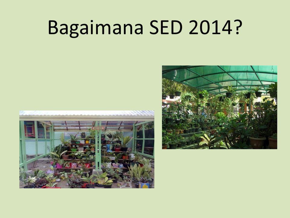 Bagaimana SED 2014