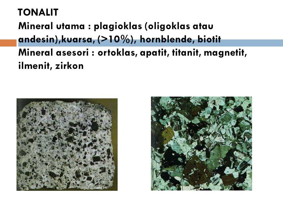 TONALIT Mineral utama : plagioklas (oligoklas atau andesin),kuarsa, (>10%), hornblende, biotit Mineral asesori : ortoklas, apatit, titanit, magnetit, ilmenit, zirkon