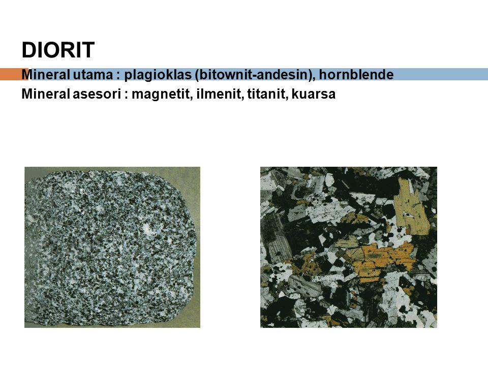 DIORIT Mineral utama : plagioklas (bitownit-andesin), hornblende