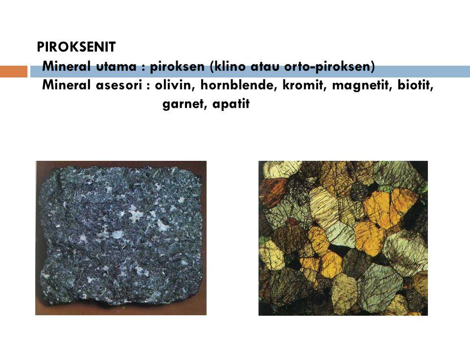 PIROKSENIT Mineral utama : piroksen (klino atau orto-piroksen) Mineral asesori : olivin, hornblende, kromit, magnetit, biotit, garnet, apatit