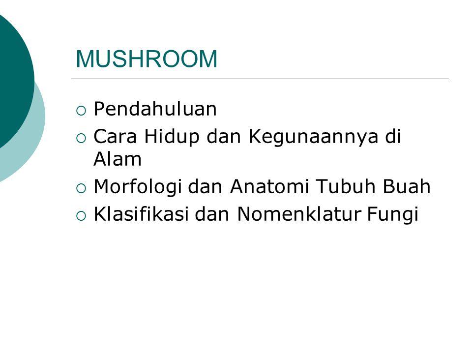 MUSHROOM Pendahuluan Cara Hidup dan Kegunaannya di Alam