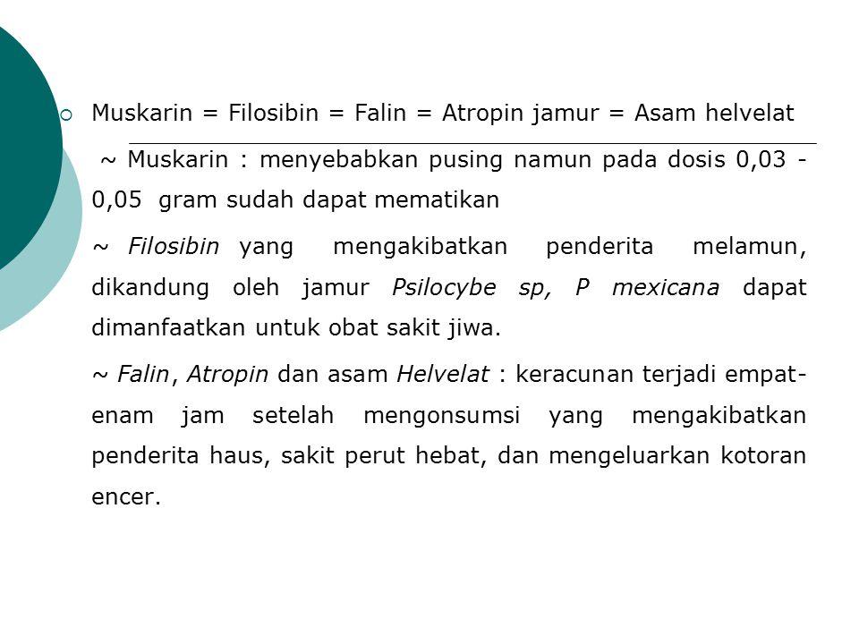 Muskarin = Filosibin = Falin = Atropin jamur = Asam helvelat
