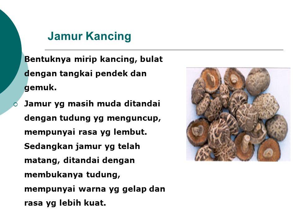 Jamur Kancing Bentuknya mirip kancing, bulat dengan tangkai pendek dan gemuk.