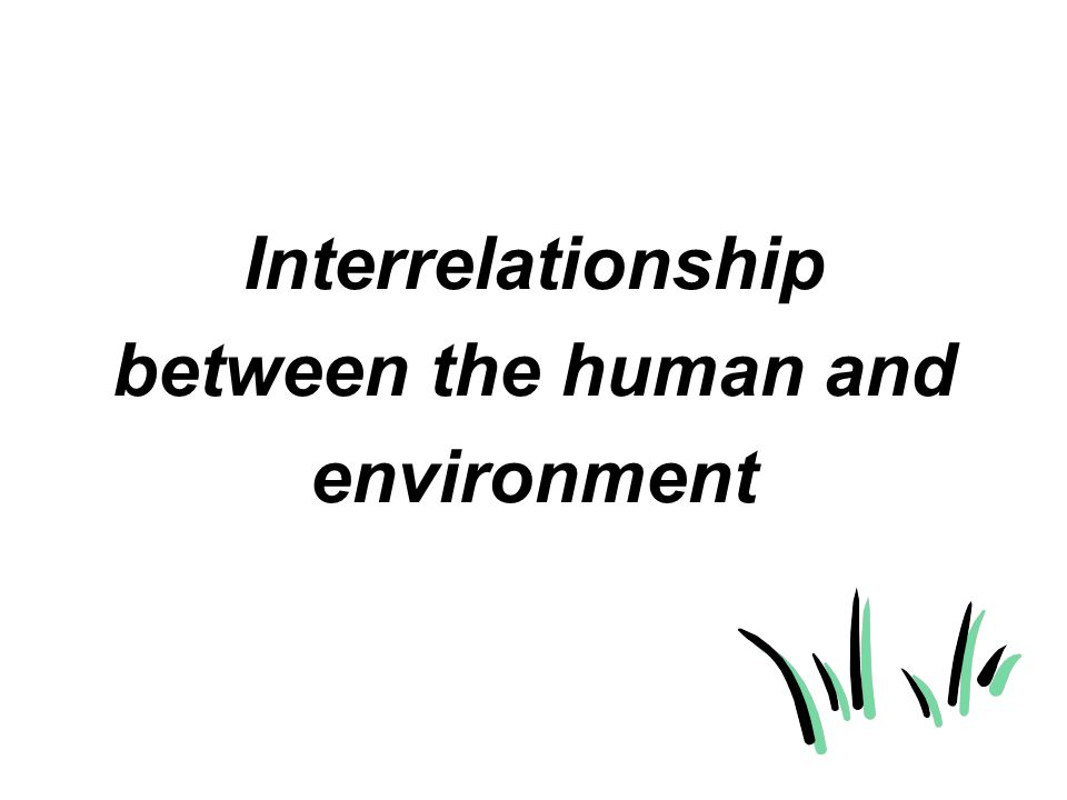 Interrelationship between the human and environment