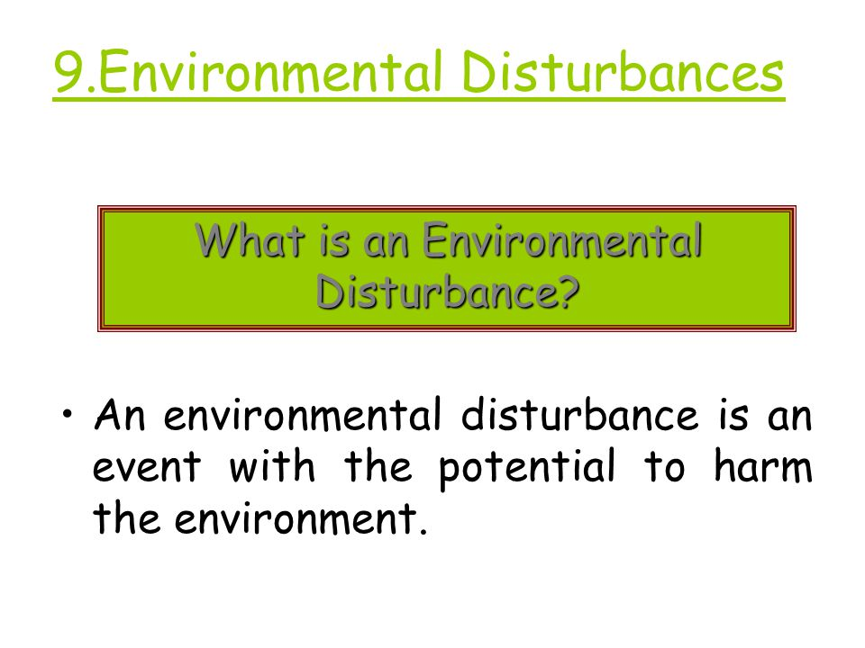 9.Environmental Disturbances