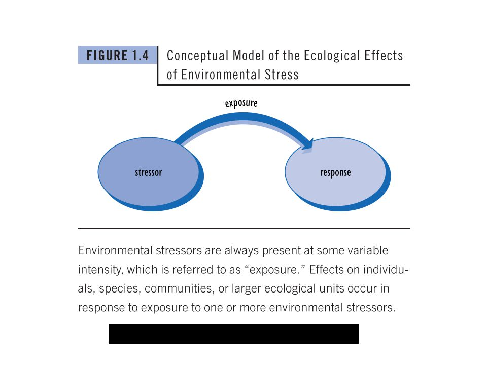 SER model; image is from: Freedman, Bill. 2007. Environmental Science