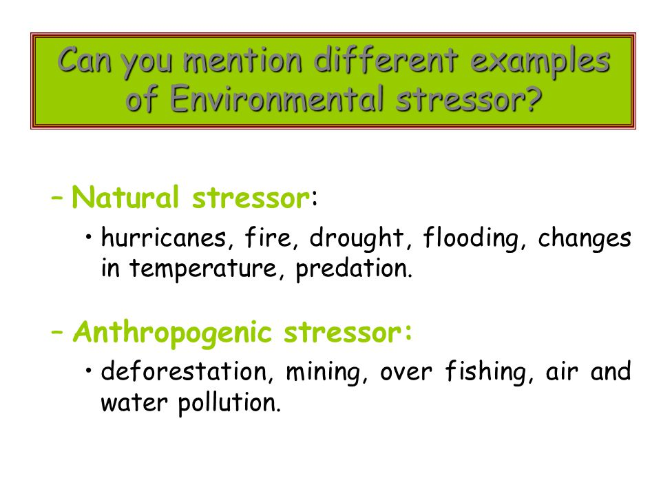 Can you mention different examples of Environmental stressor