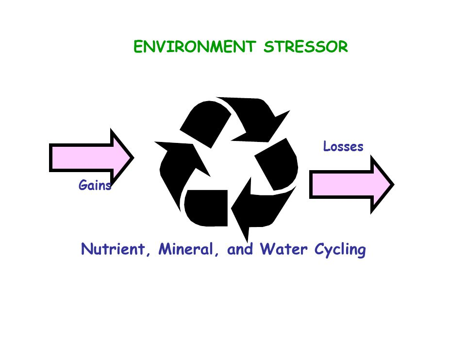 Nutrient, Mineral, and Water Cycling