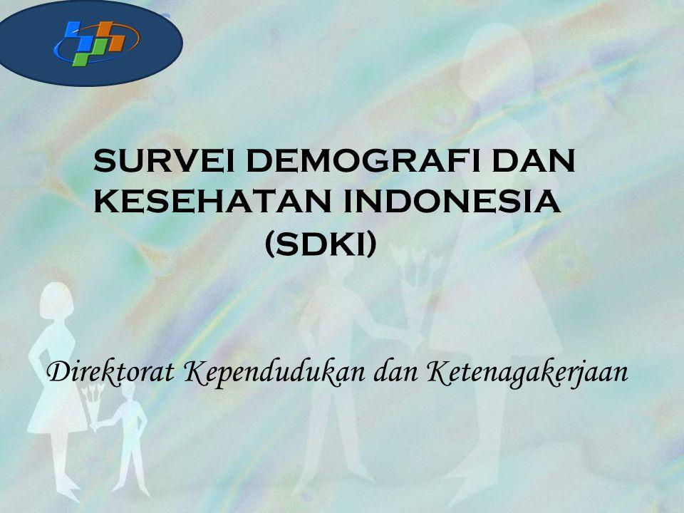 SURVEI DEMOGRAFI DAN KESEHATAN INDONESIA