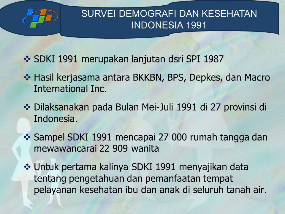 SURVEI DEMOGRAFI DAN KESEHATAN INDONESIA 1991