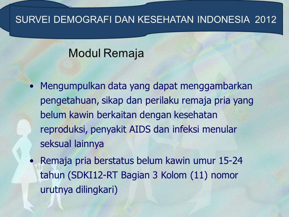 SURVEI DEMOGRAFI DAN KESEHATAN INDONESIA 2012