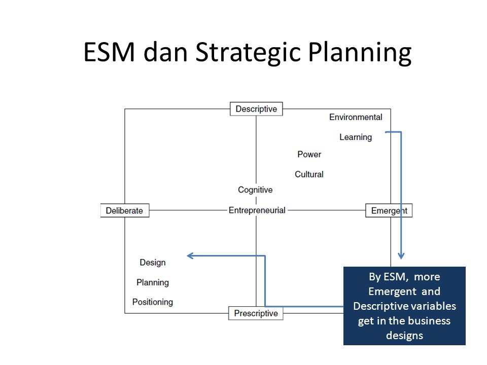 ESM dan Strategic Planning