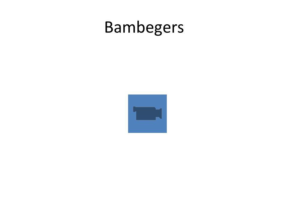 Bambegers