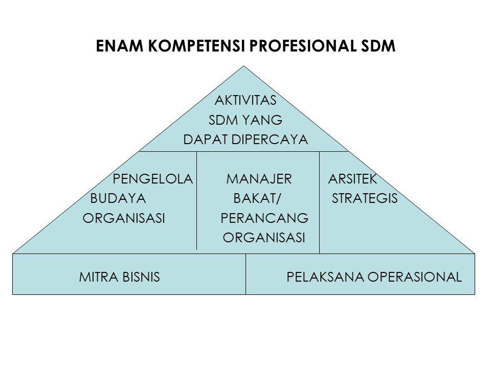 ENAM KOMPETENSI PROFESIONAL SDM