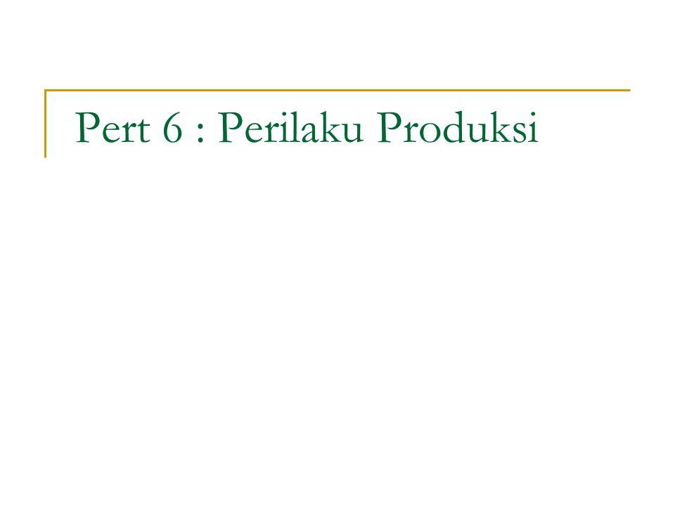 Pert 6 : Perilaku Produksi