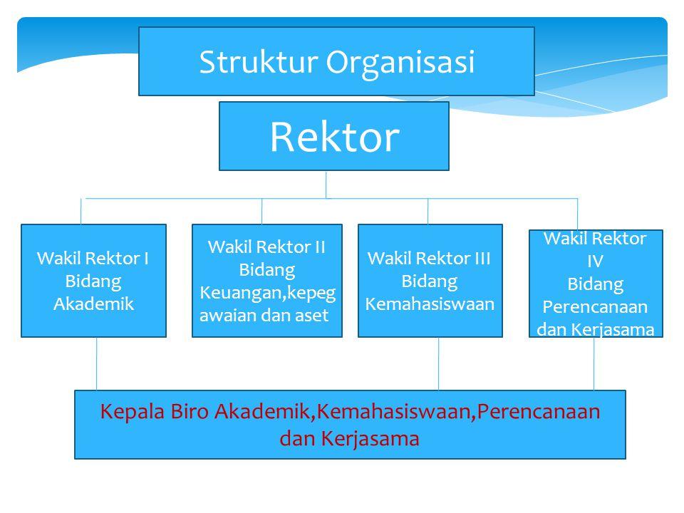 Rektor Struktur Organisasi