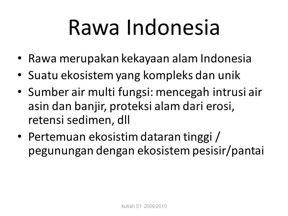 Rawa Indonesia Rawa merupakan kekayaan alam Indonesia
