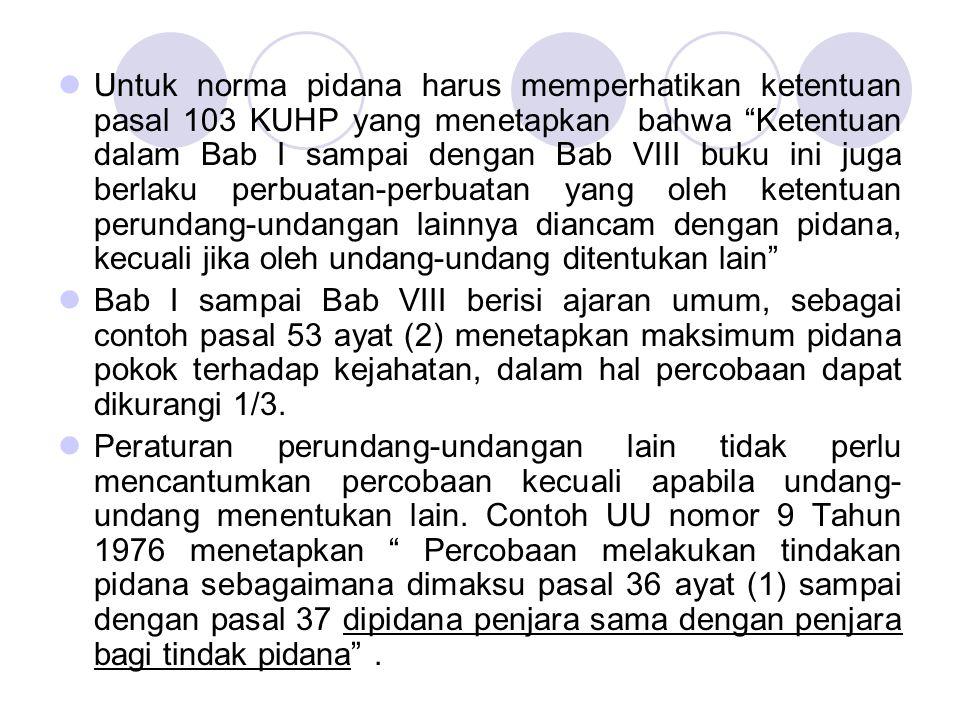 Untuk norma pidana harus memperhatikan ketentuan pasal 103 KUHP yang menetapkan bahwa Ketentuan dalam Bab I sampai dengan Bab VIII buku ini juga berlaku perbuatan-perbuatan yang oleh ketentuan perundang-undangan lainnya diancam dengan pidana, kecuali jika oleh undang-undang ditentukan lain