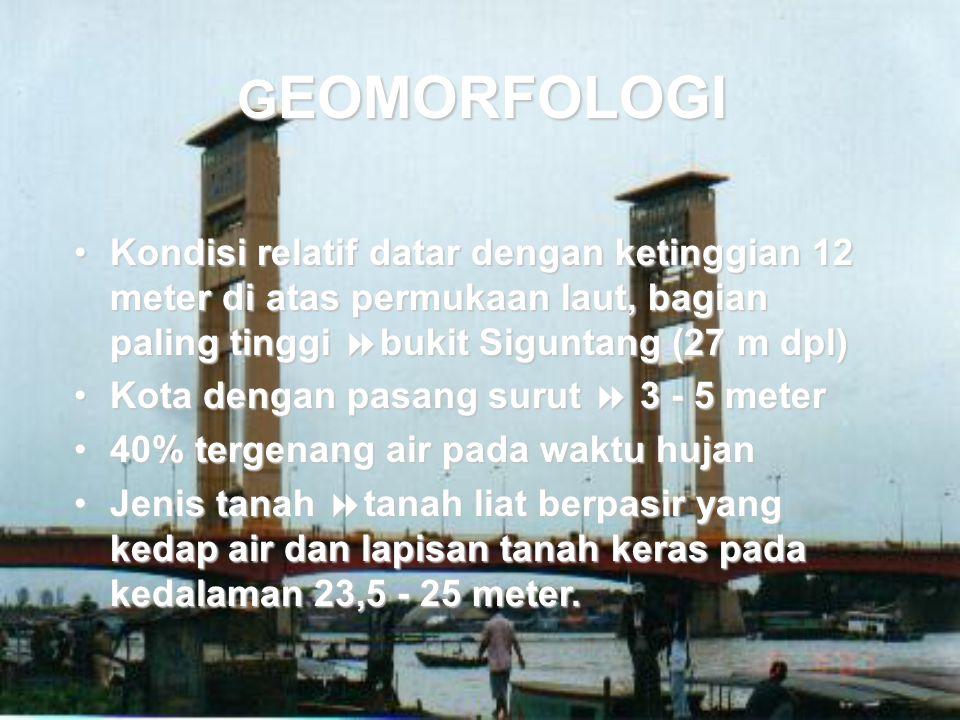 GEOMORFOLOGI Kondisi relatif datar dengan ketinggian 12 meter di atas permukaan laut, bagian paling tinggi bukit Siguntang (27 m dpl)