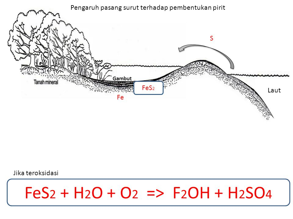 FeS2 + H2O + O2 => F2OH + H2SO4