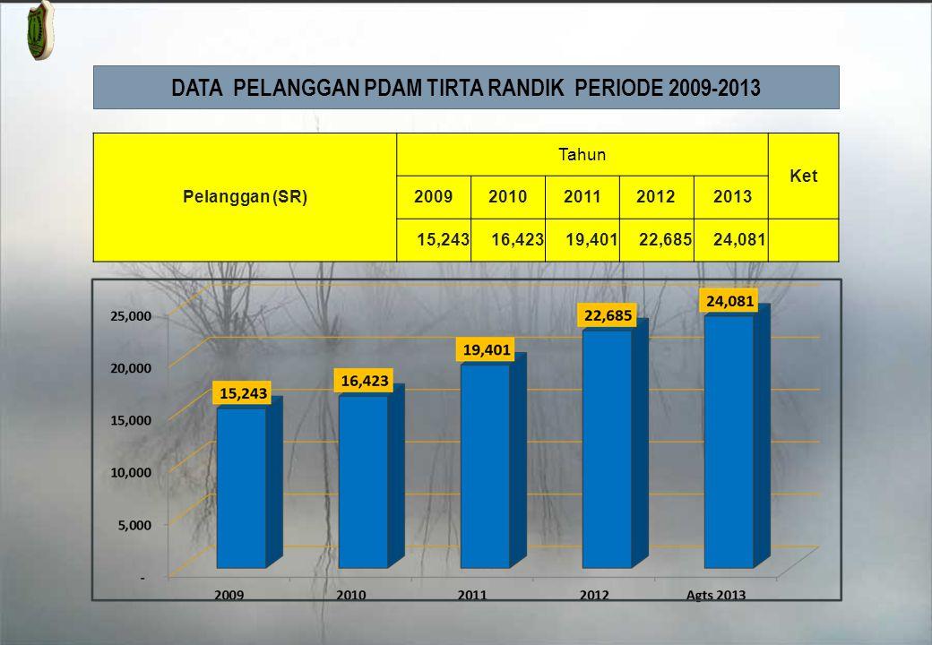 DATA PELANGGAN PDAM TIRTA RANDIK PERIODE 2009-2013