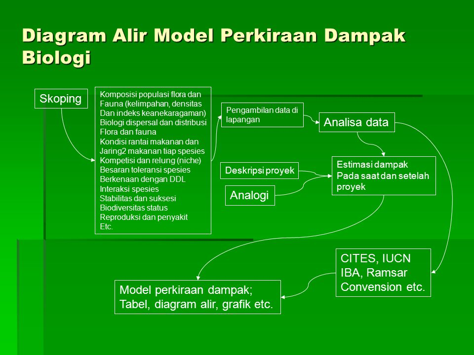 Diagram Alir Model Perkiraan Dampak Biologi
