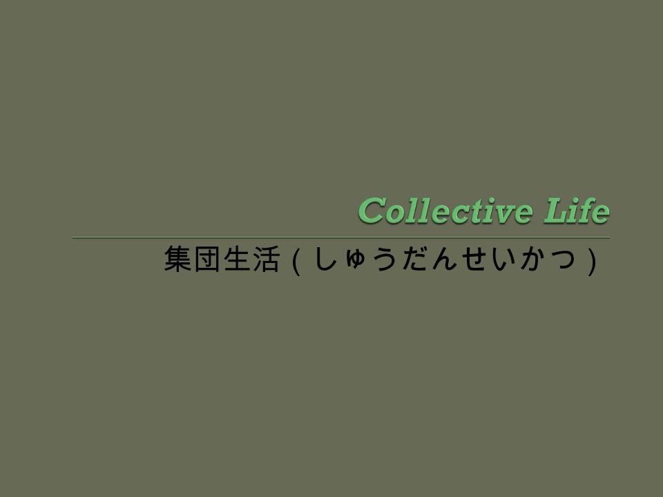 Collective Life 集団生活(しゅうだんせいかつ)