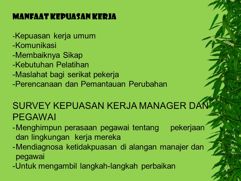 SURVEY KEPUASAN KERJA MANAGER DAN PEGAWAI