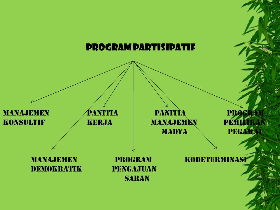 PROGRAM PARTISIPATIF Manajemen Panitia Panitia Program