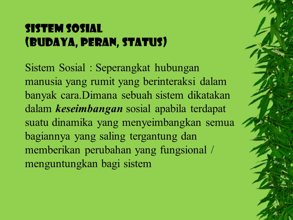 SISTEM SOSIAL (Budaya, Peran, Status)