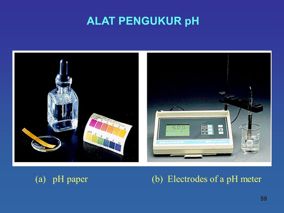 ALAT PENGUKUR pH (a) pH paper (b) Electrodes of a pH meter